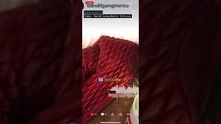 Yakki ft. Bandit Gang Marco- Trill Luv