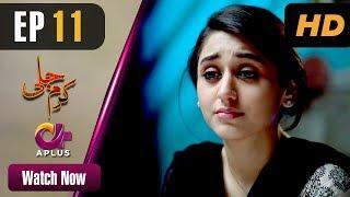 Pakistani Drama   Karam Jali - Episode 11   Aplus Dramas   Daniya, Humayun Ashraf