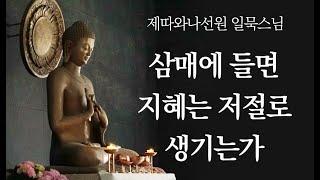 Download lagu 삼매에 들면 지혜는 저절로 생기는가ㅣ일묵스님ㅣ2020. 12. 16. 초기불교 제따와나선원 수요정기법회