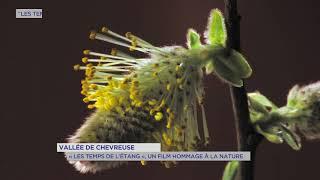"""""""Les temps de l'Etang"""" : Alexis Boullay s'installe aux étangs de Hollande"""
