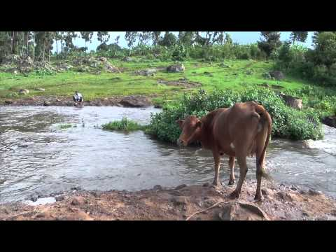 Trip to Uganda // August 2014