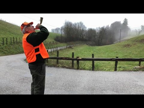Mais segurança nos dias de caça