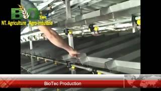 biotec Production de l'orge hydroponique
