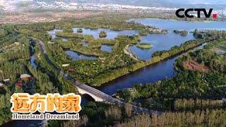 《远方的家》 20200521 行走青山绿水间 守护美丽湿地  CCTV中文国际