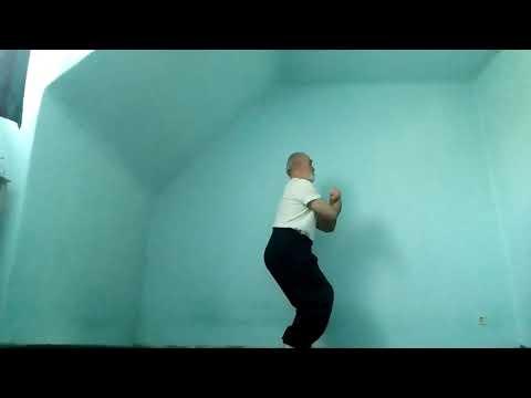 Wushu rumen Kung Fu teil 2 Kuen 6