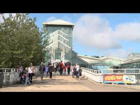 Surrey Tourism Mood Film