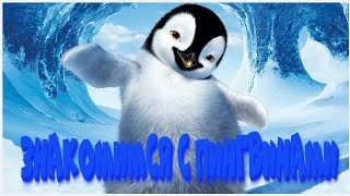 Пингвинариум Зоопарк сафари парк Балу гуляем в Анапе  # день 2(Пингвинариум Зоопарк сафари парк Балу гуляем в Анапе # день 2 Пингвинариум. Здесь можно познакомить детей..., 2017-01-21T15:32:19.000Z)