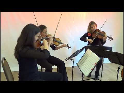 A Thousand Years performed by Saffron Strings
