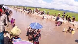 Rohingya Situation in Palang khali