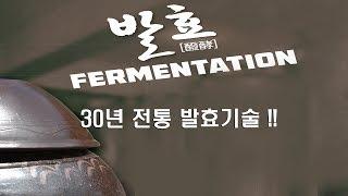 초록원메가선 제조공장 _ 동영상