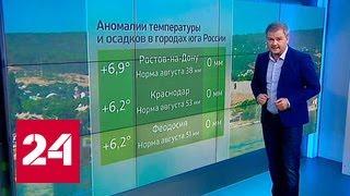 Погода 24   жара на юге России идет на спад