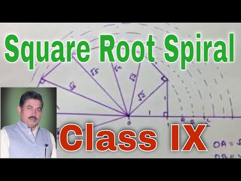 Construction The Square Root Spiral For Class IX CBSE