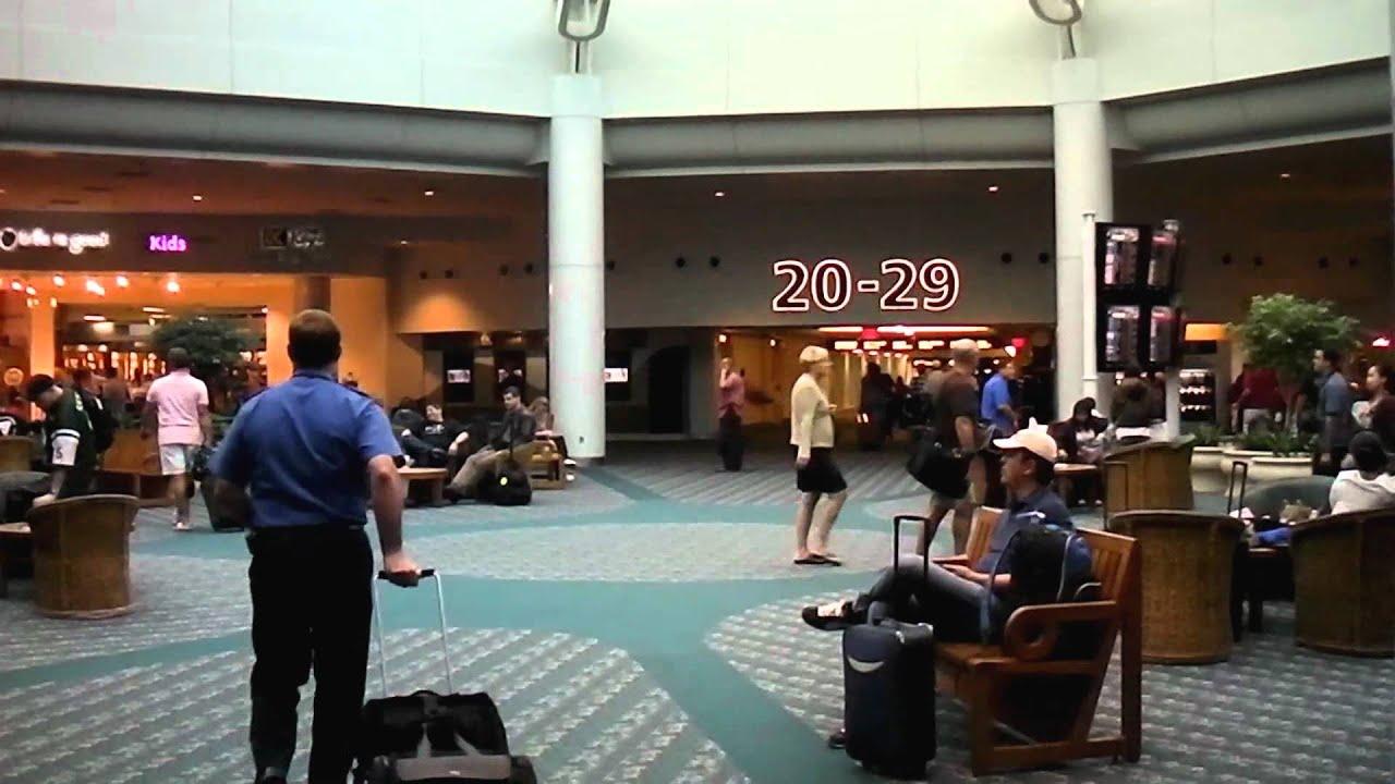Car Rental Orlando Mco In Airport