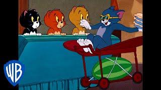 Tom & Jerry   Revenge On The Triplets   Classic Cartoon   Wb Kids