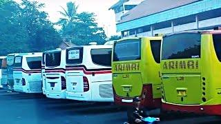 Kumpulan Video Bis dan Terminal Kampung Rambutan di Pagi Hari