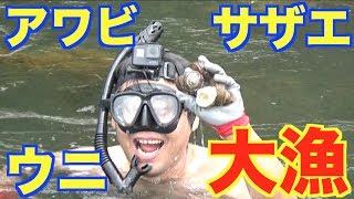 海に潜って高級食材を手で獲りまくる!【素潜り編】#6