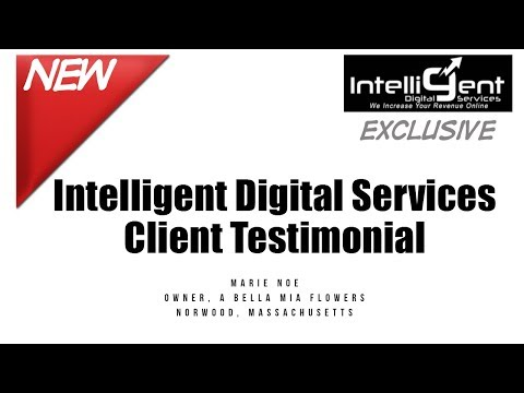 Marie Noe Testimonial For Intelligent Digital Services
