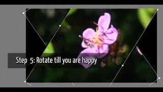 Rotating a Video | Adobe Premiere Elements Training #1 | VIDEOLANE.COM