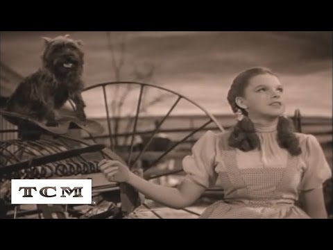 Over the Rainbow | Tu canción | TCM