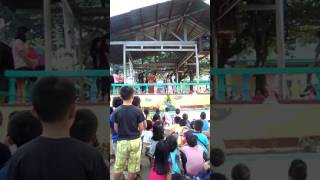 Video Kidapawan city pilot elementary school fire project download MP3, 3GP, MP4, WEBM, AVI, FLV Desember 2017
