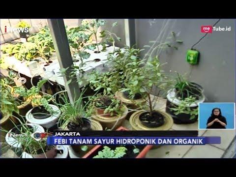 Manfaatkan Pekarangan Rumah, Salurkan Hobi Bisnis dan Berkebun - iNews Siang 31/03