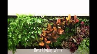 Vertical Gardening. Best Living Walls. Vertical Gardening