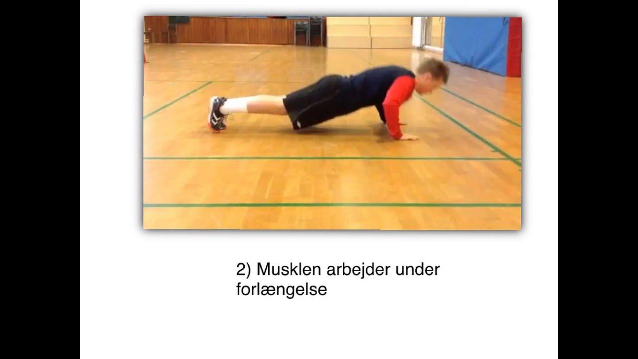 4 måder en muskel kan være på i bevægelsesanalysen