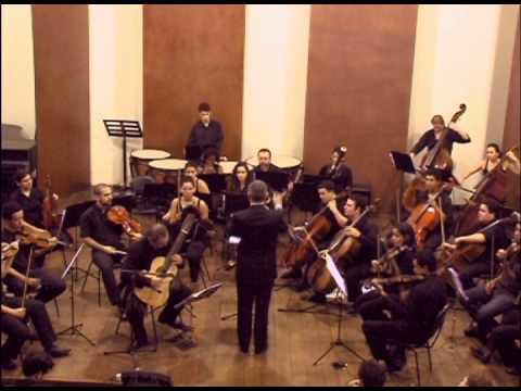 Concerto para Violão e Orquestra de Câmara (Luiz Otávio Braga)