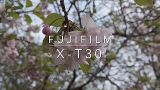 Fujifilm X-T30 15-45mm video test