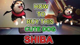 How to get shiba pet in free fire tricks tamil
