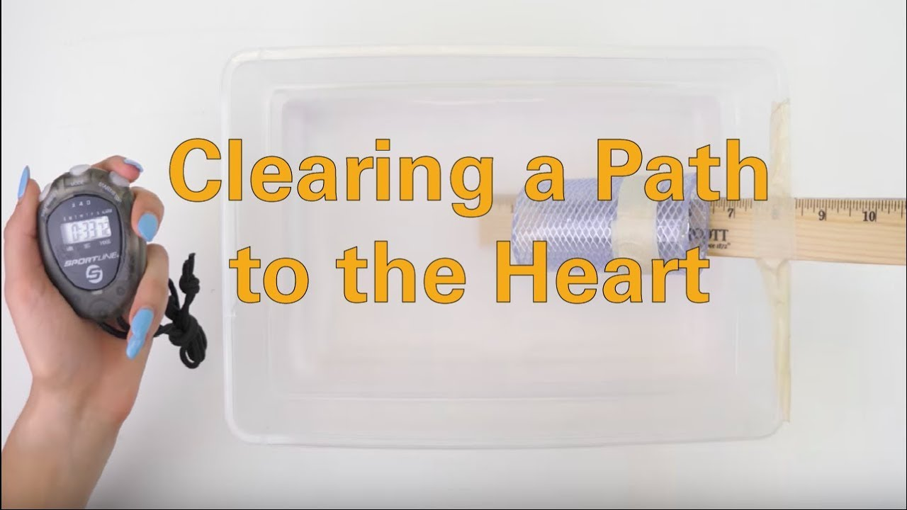 Clearing a Path to the Heart - Activity - TeachEngineering