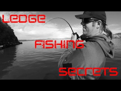 Ledge Fishing: Techniques For Catching Huge Bass