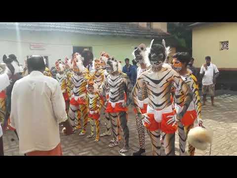 Huli vesha | tiger dance  ಹುಲಿ ವೇಷ