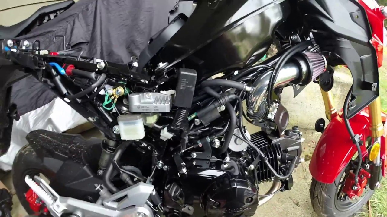 2017 Honda Grom - Fairing removal Tips and Chimera Cold ...