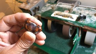 Live! Windowing Fire Agate For SaleTomorrow!