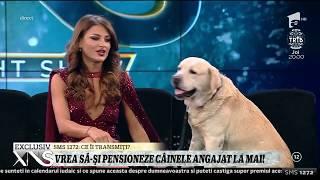 Elena Marin vrea să-și pensioneze câinele angajat la Ministerul de Interne