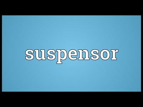 Header of suspensor