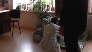 """Эпидемия в """"Центре защиты животных"""""""