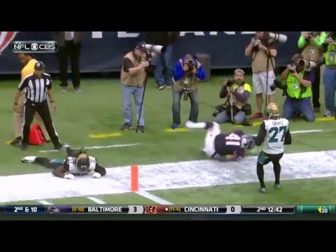 Texans vs Jaguars | Week 17 Highlights | Entire Sportz