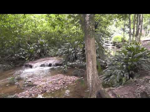 La Llovizna, Chorrerón, Cojedes, Venezuela. (Venezuela, Rutas y Parajes)
