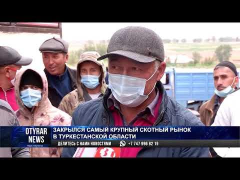 Закрылся самый крупный скотный рынок Туркестанской области