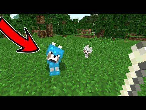 КАК одеть броню на ВОЛКА в Minecraft 1.2 (Pocket Edition, Xbox)