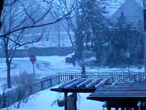 Blizzard in Evanston