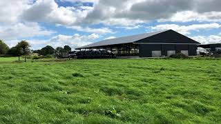 A brand new 150-cubicle shed in Co. Offaly