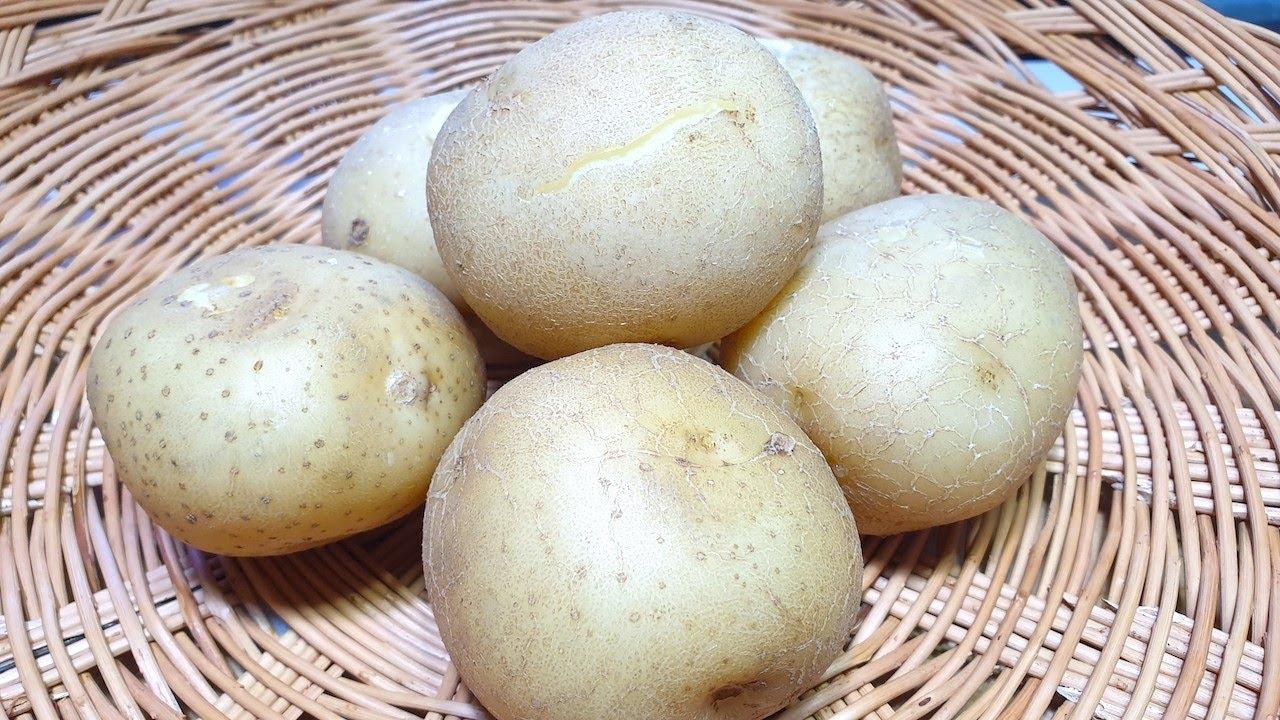 감자삶는법 감자 삶을때 '이건 넣고' '이건 넣지 말아야' 합니다 포실포실 감자삶는법