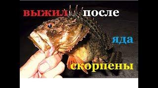 КАК ПОЧИСТИТЬ МОРСКОГО ЕРША,СКОРПЕНУ . как почистить ЯДОВИТУЮ черноморскую рыбу и остаться В ЖИВЫХ