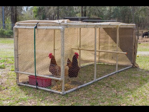 How big should my chicken coop be?