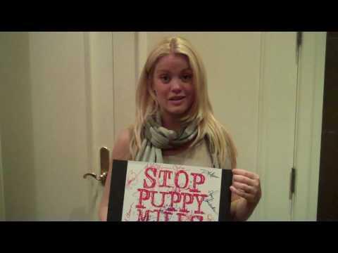 Bree Williamson for Stop Puppy Mills Flip Cam Video