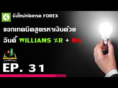 Forex ตอนที่ 31 : แจกเทคนิคสูตรหาเงินด้วย อินดี้ WILLIAMS %R + MA