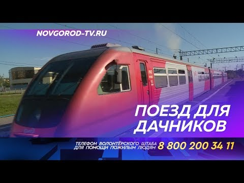 Новгородские дачники опробовали новый поезд по Лужскому направлению